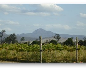 Ironbark Ridge Vineyard - Tourism Gold Coast