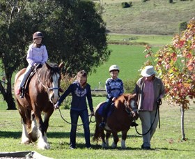 Bathurst Farm Experience - Tourism Gold Coast