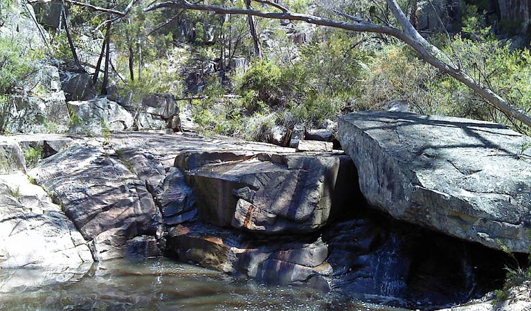 Torrington State Conservation Area - Tourism Gold Coast