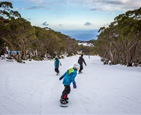 Mt Baw Baw Alpine Resort - Tourism Gold Coast