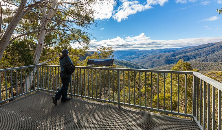 Wallace Creek lookout - Tourism Gold Coast