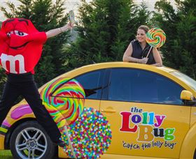 The Lolly Bug - Tourism Gold Coast