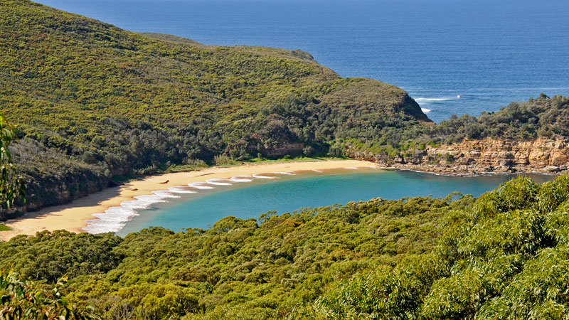 Bouddi National Park - Tourism Gold Coast