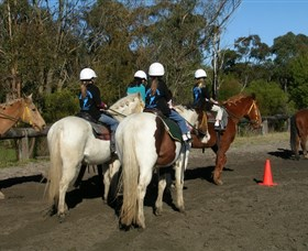 Darkes Forest Riding Ranch - Tourism Gold Coast