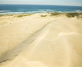 Discovery Bay Coastal Park - Tourism Gold Coast
