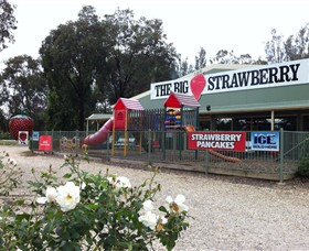 The Big Strawberry - Tourism Gold Coast