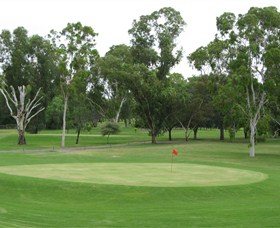 Moree Golf Club - Tourism Gold Coast
