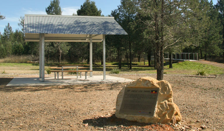 Terry Hie Hie picnic area - Tourism Gold Coast