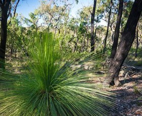 Brisbane Ranges National Park - Tourism Gold Coast