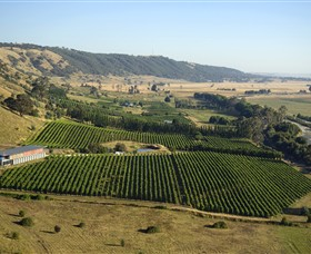 Lerida Estate Winery and Restaurant - Tourism Gold Coast