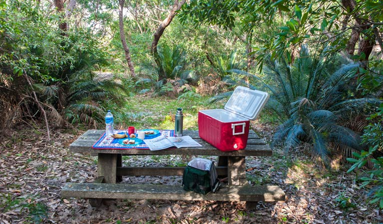 Little Llangothlin picnic area - Tourism Gold Coast