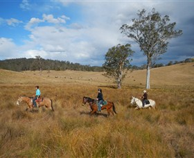 Chapman Valley Horse Riding - Tourism Gold Coast