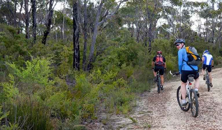 McMahon's Point ride - Wentworth Falls
