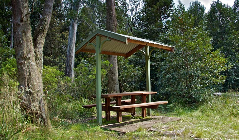 Devils Hole lookout walk and picnic area - Tourism Gold Coast