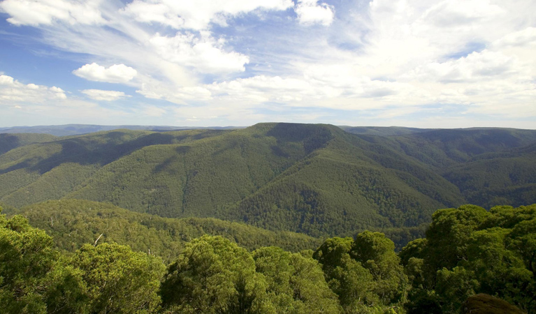 Barrington Tops National Park - Tourism Gold Coast