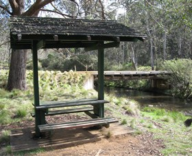 Barrington Tops State Forest - Tourism Gold Coast