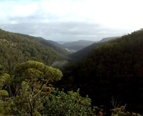 Nattai Gorge Lookout - Tourism Gold Coast