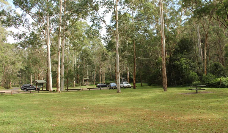 Mill Creek picnic area - Tourism Gold Coast
