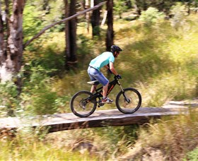 The Steps Mountain Bike Park - Tourism Gold Coast