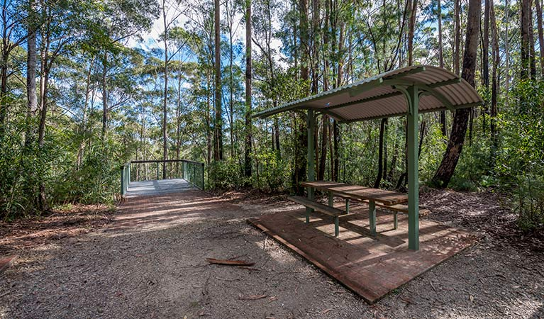 Big Nellie lookout and picnic area - Tourism Gold Coast