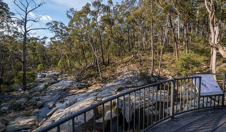 Myanba Gorge walking track - Tourism Gold Coast