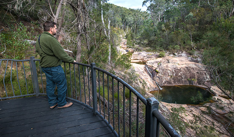 Biamanga National Park - Tourism Gold Coast