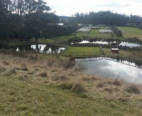 Guide Falls Farm - Tourism Gold Coast