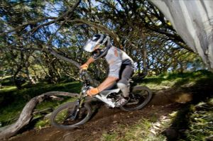 All Terrain Cycles - Tourism Gold Coast