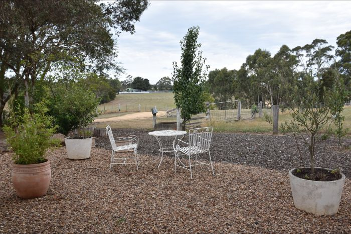 Cygnet Park Country Retreat - Tourism Gold Coast