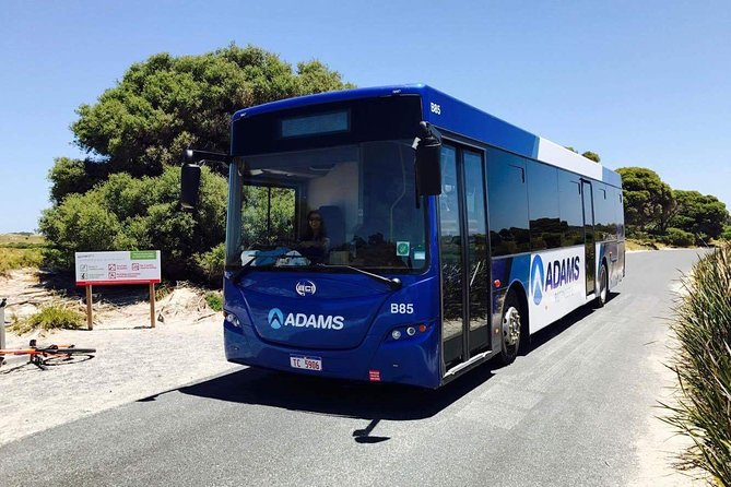 Rottnest Bayseeker Bus Tour from Hillarys Boat Harbour - Tourism Gold Coast