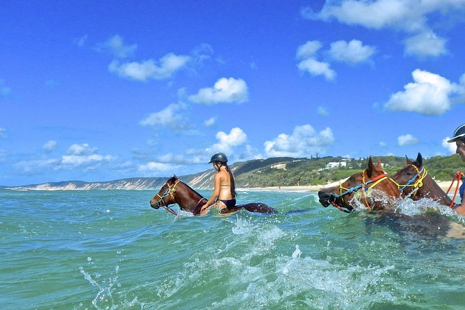 Horse Swimming Ride from Rainbow Beach - Tourism Gold Coast