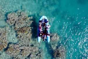 Glass-bottom boat tour with Whitehaven Beach - Tourism Gold Coast