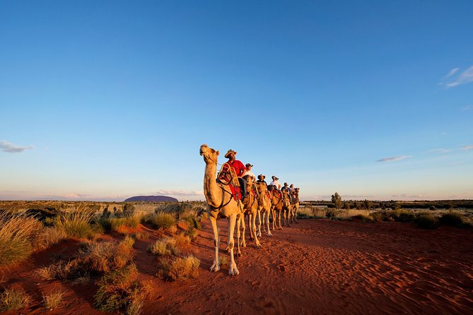 Uluru Camel Express Sunrise or Sunset Tours - Tourism Gold Coast