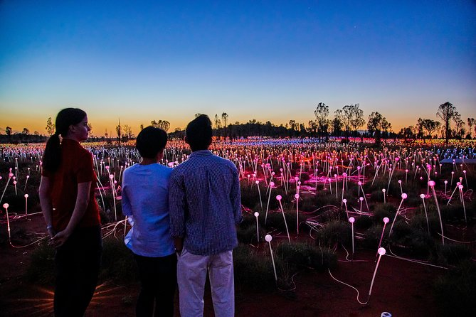 Uluru Field of Light Sunrise Tour - Tourism Gold Coast