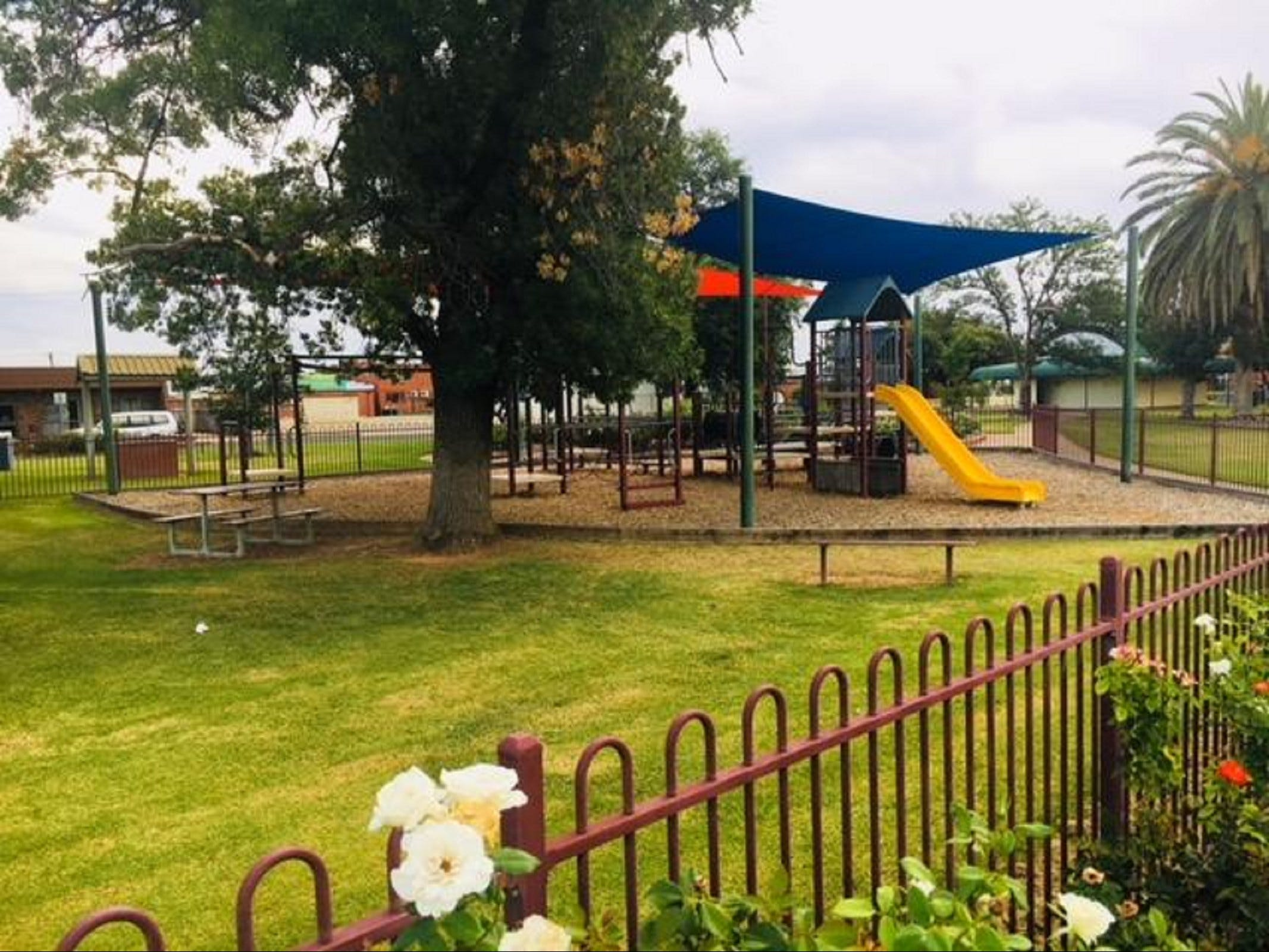 Cobram Mivo Park and Playground - Tourism Gold Coast