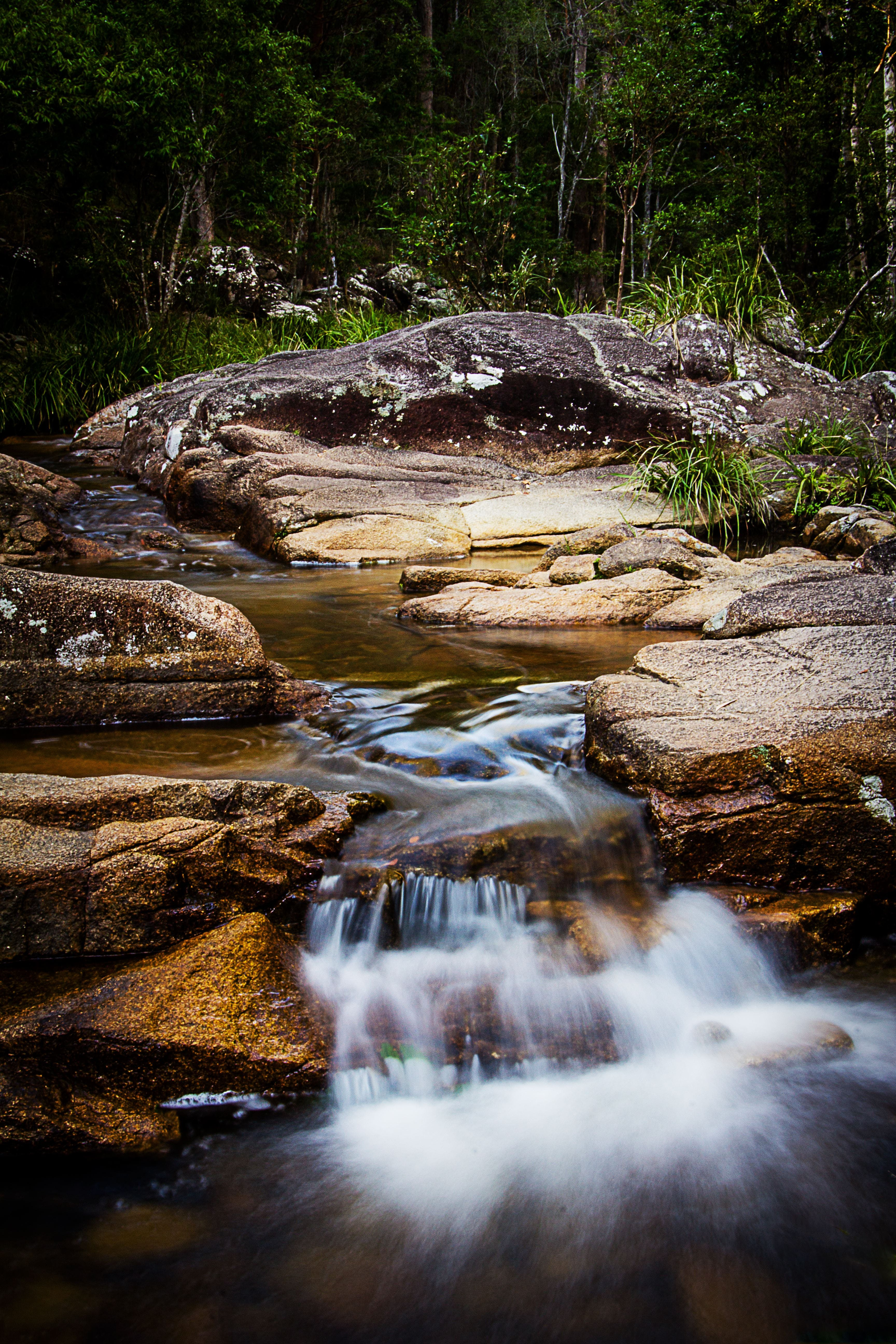 Mothar Mountain Rockpools - Tourism Gold Coast