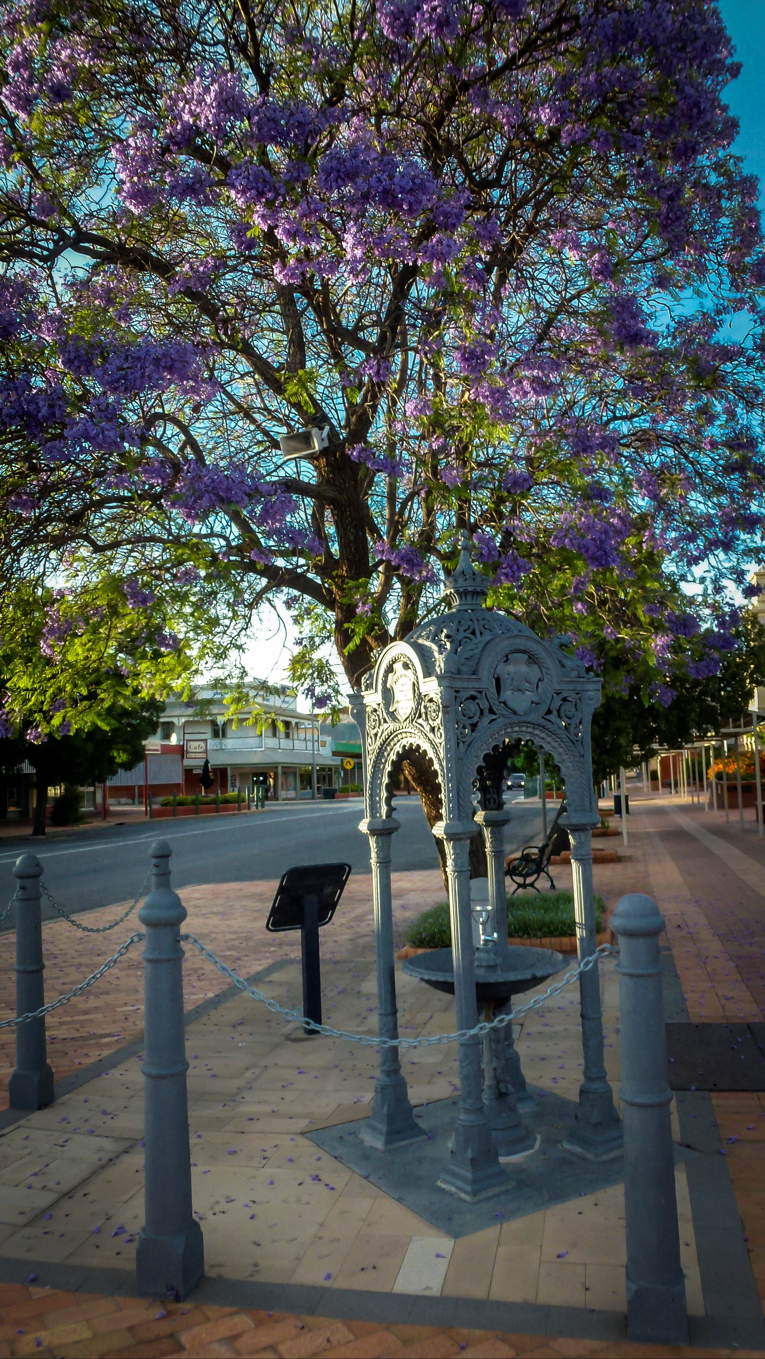 Witcombe Fountain - Tourism Gold Coast