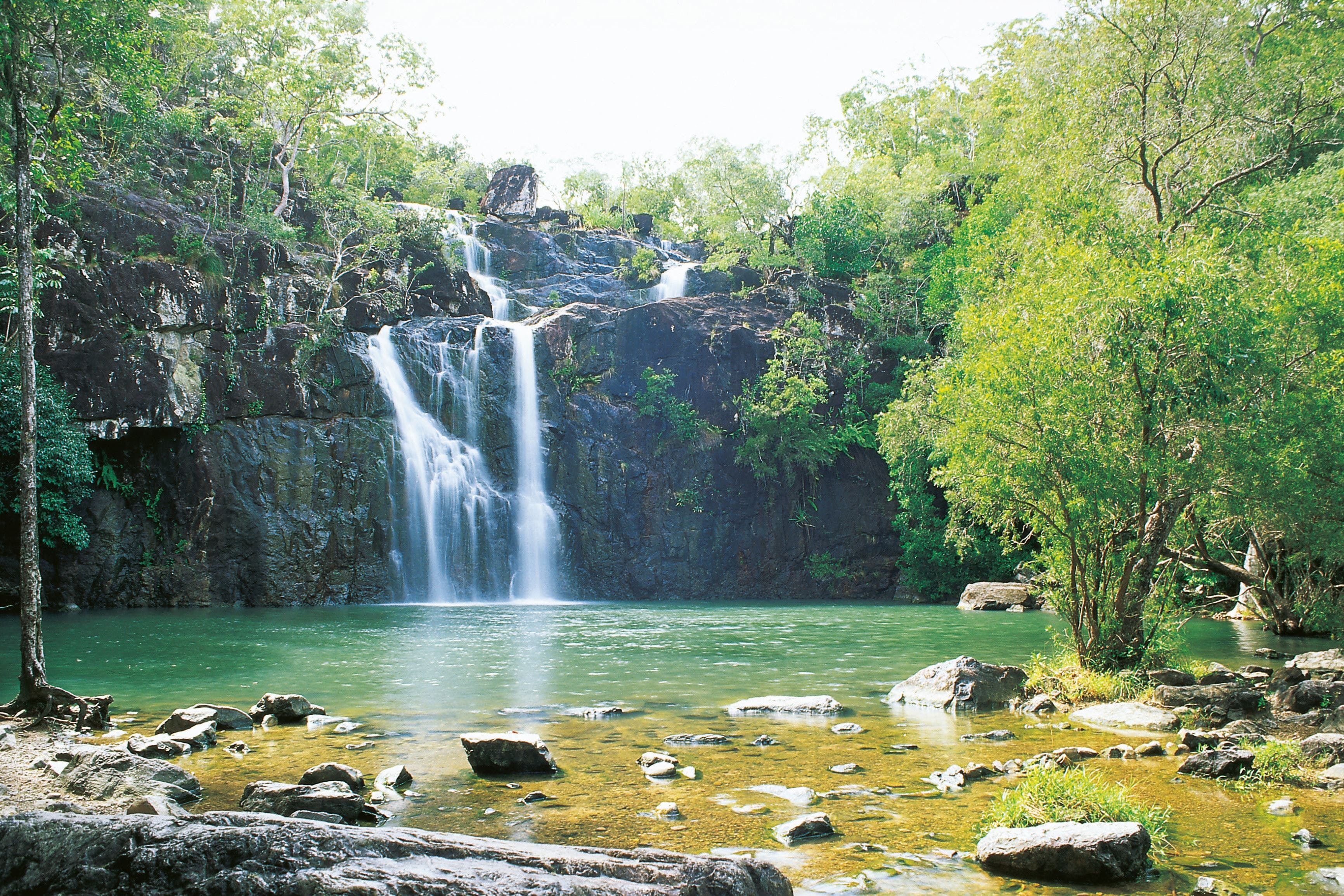 Airlie Beach to Cedar Creek Falls - Tourism Gold Coast