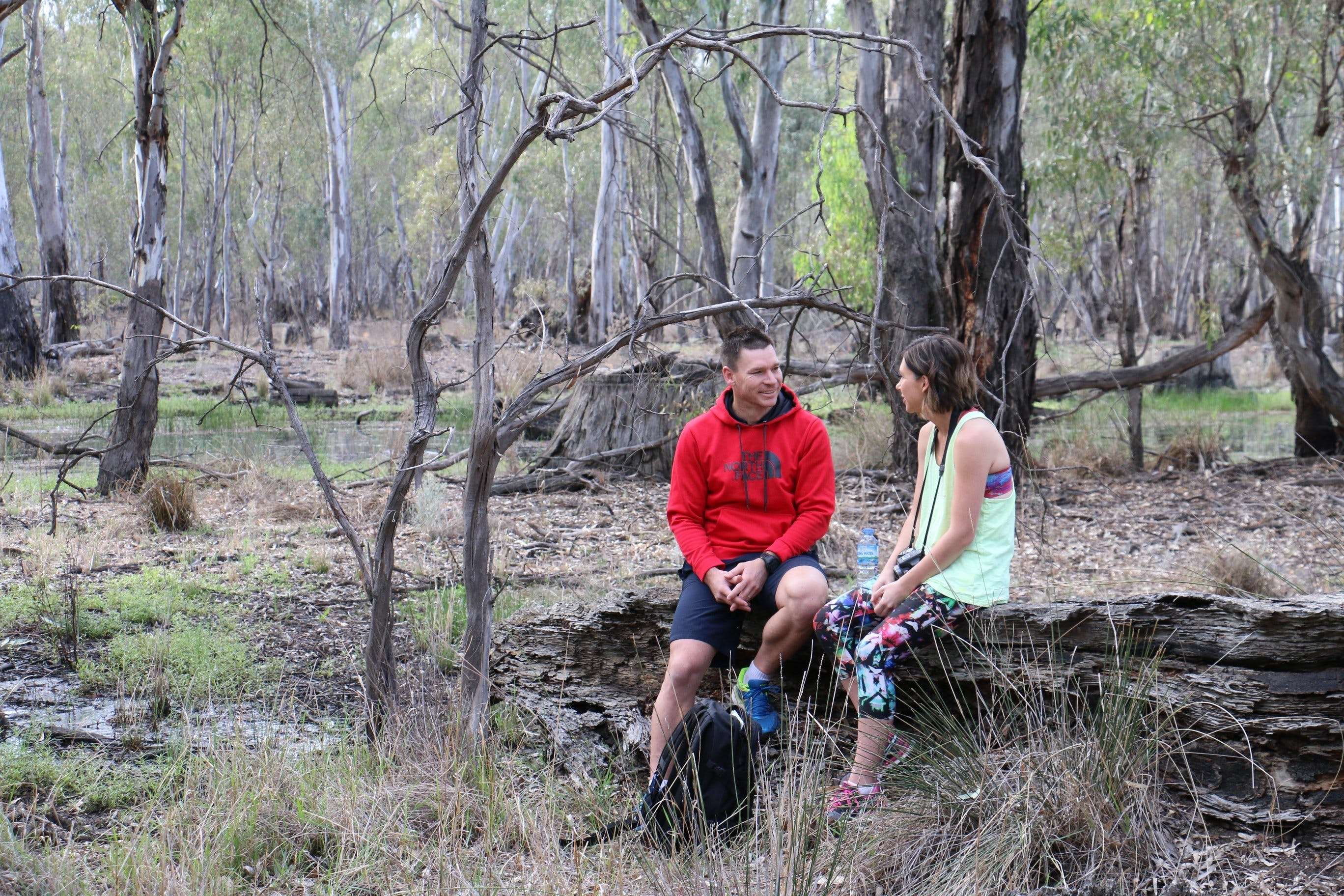 Gunbower Island Forest Drive - Tourism Gold Coast