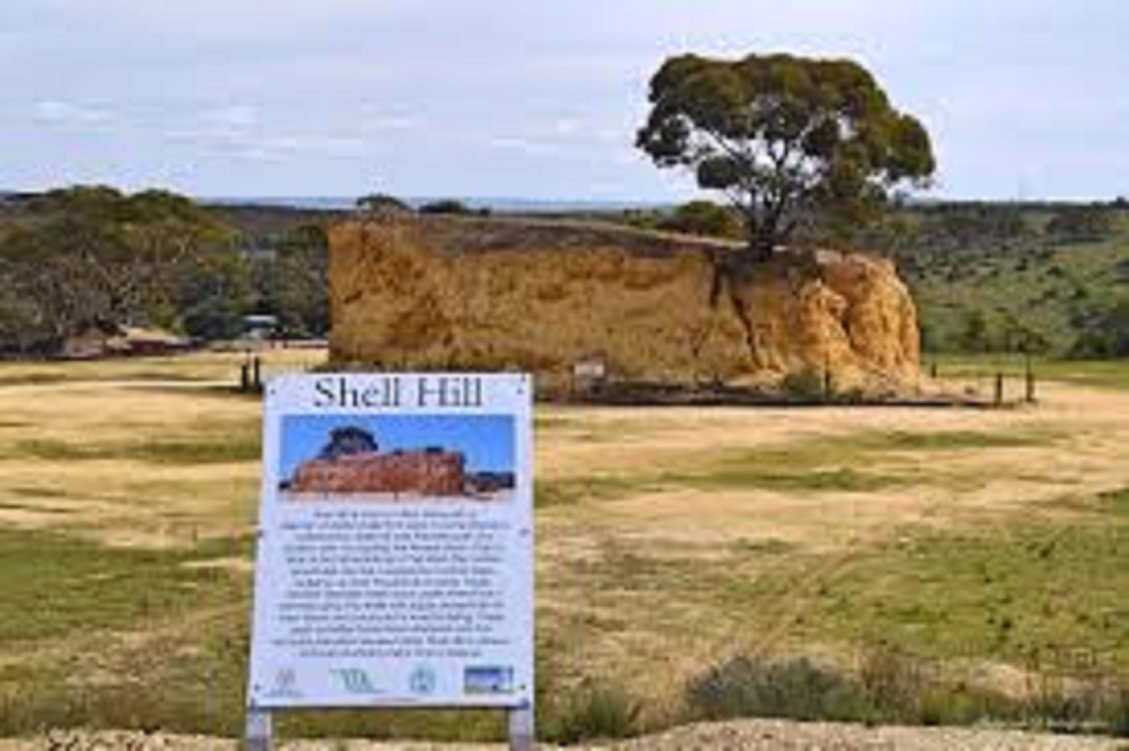Shell Hill Reserve - Tourism Gold Coast