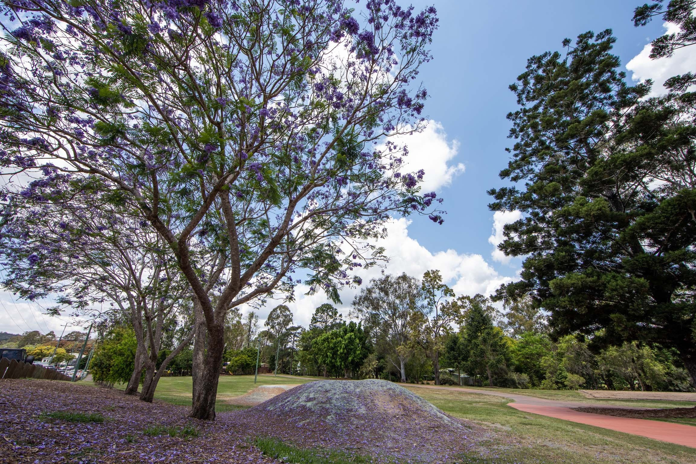 John Scott Park - Tourism Gold Coast