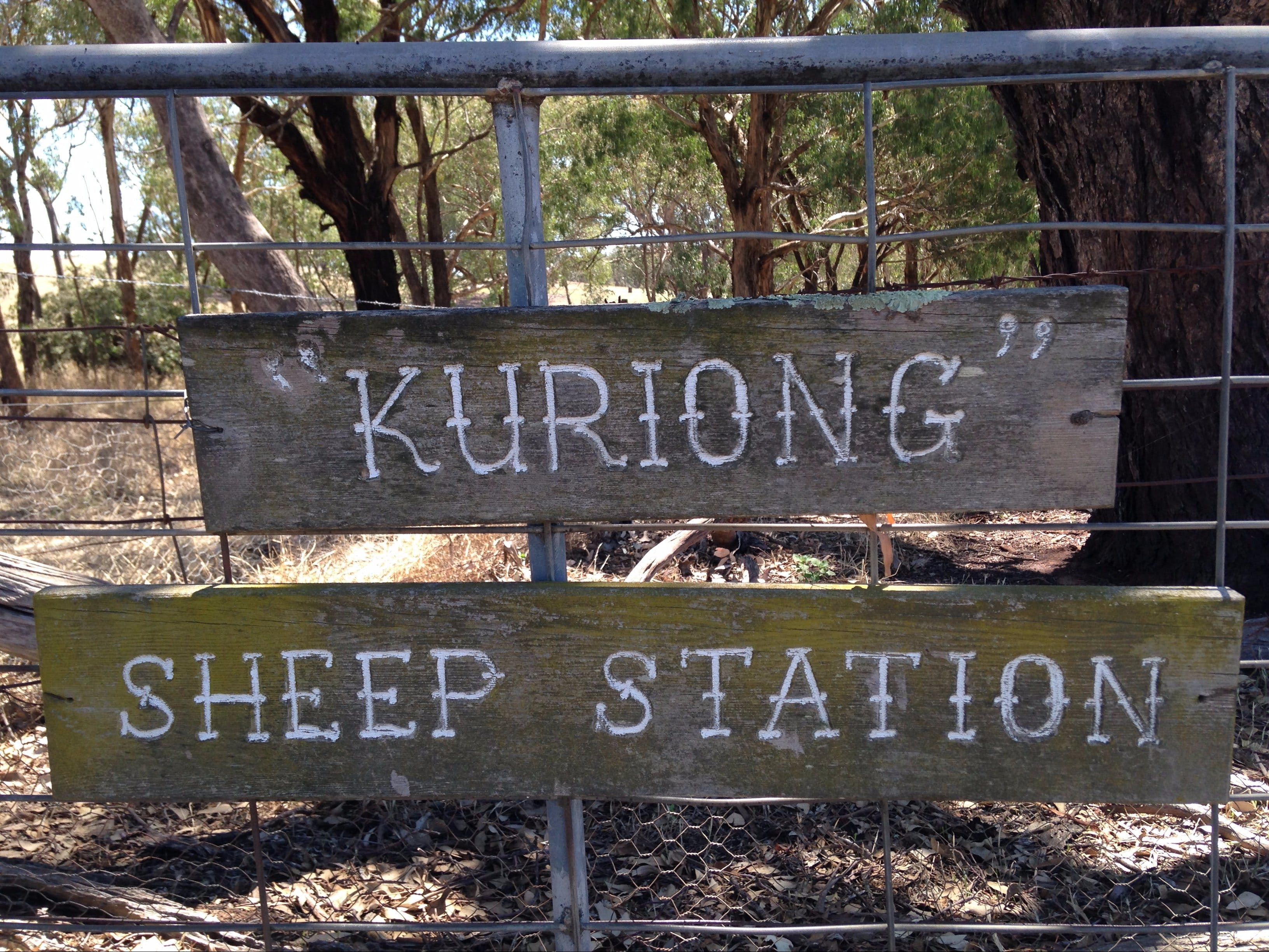 Kuriong Sheep Station - Tourism Gold Coast