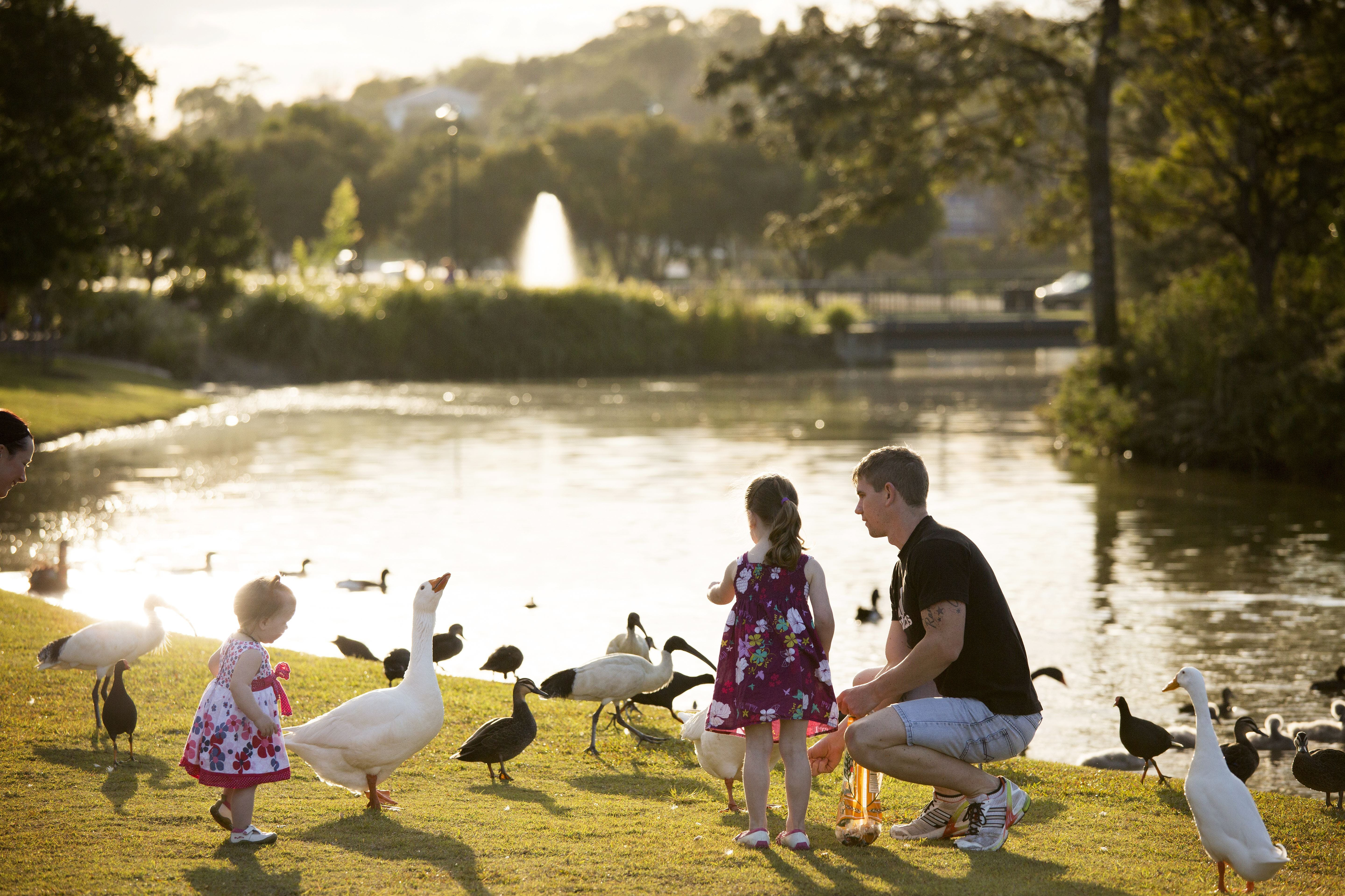 Lake Alford Recreational Park - Tourism Gold Coast