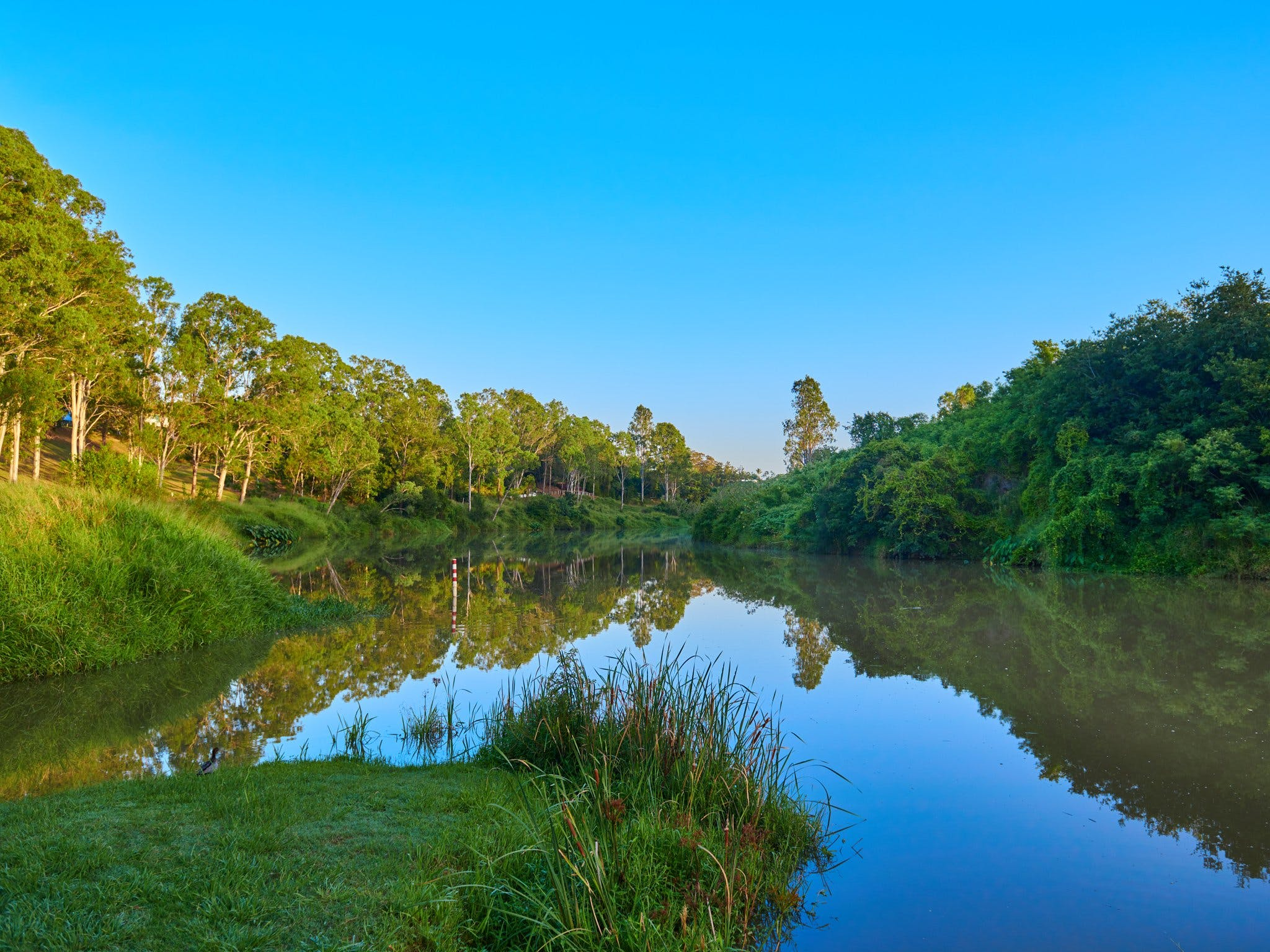 Cribb Park - Tourism Gold Coast
