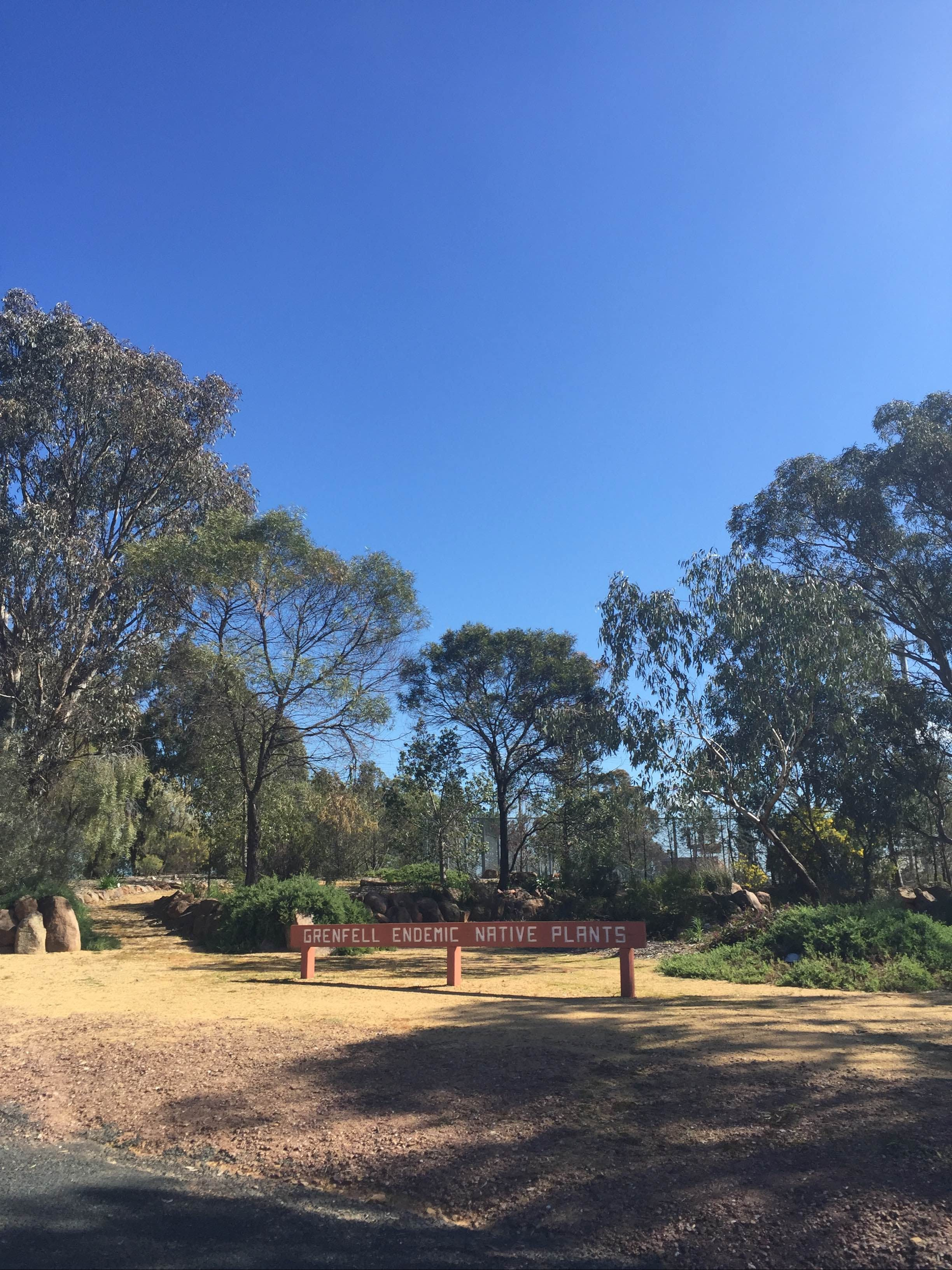 Grenfell Endemic Garden - Tourism Gold Coast
