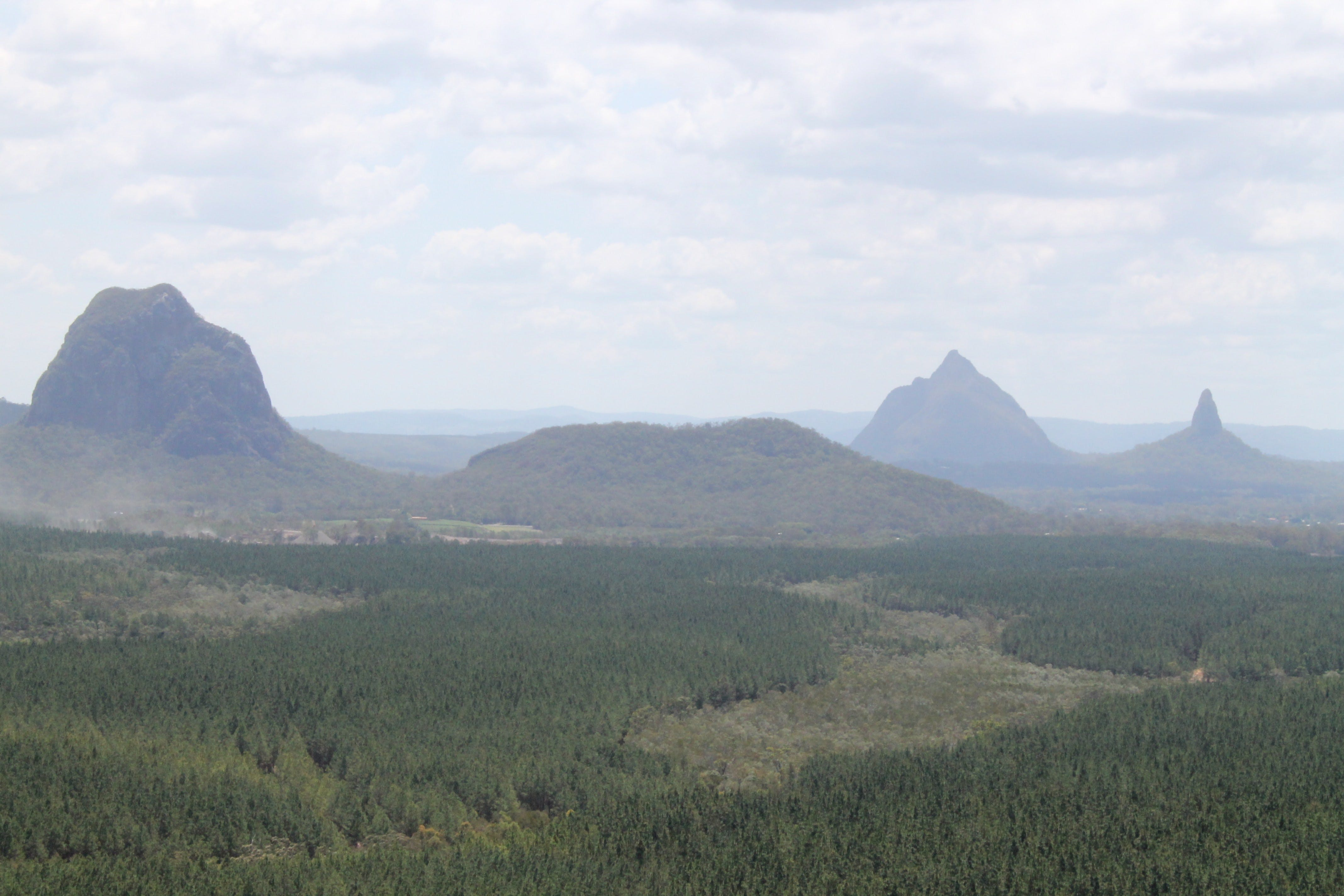 Wild Horse Mountain Lookout - Tourism Gold Coast