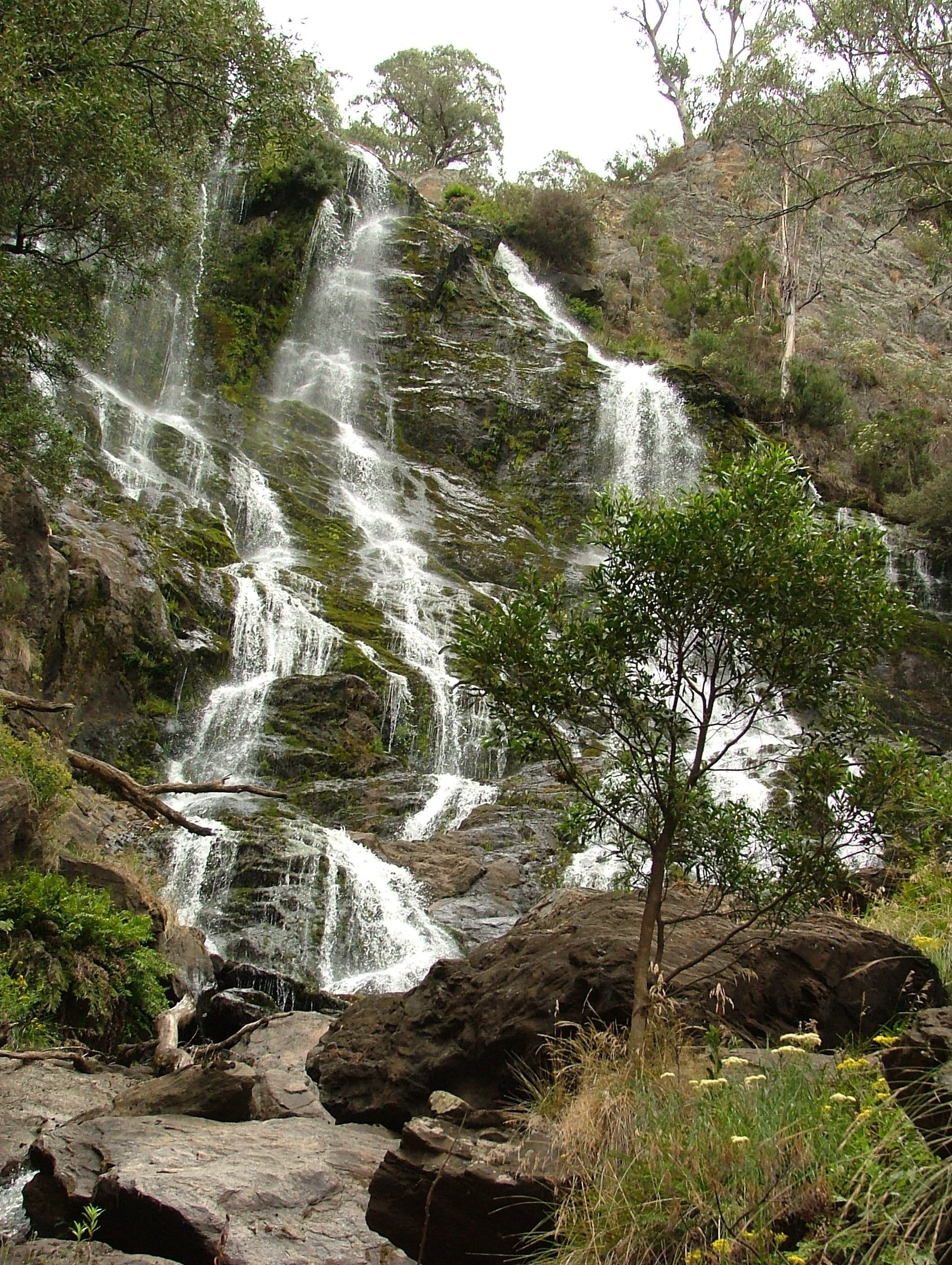 Buddong Falls Walking Track - Tourism Gold Coast