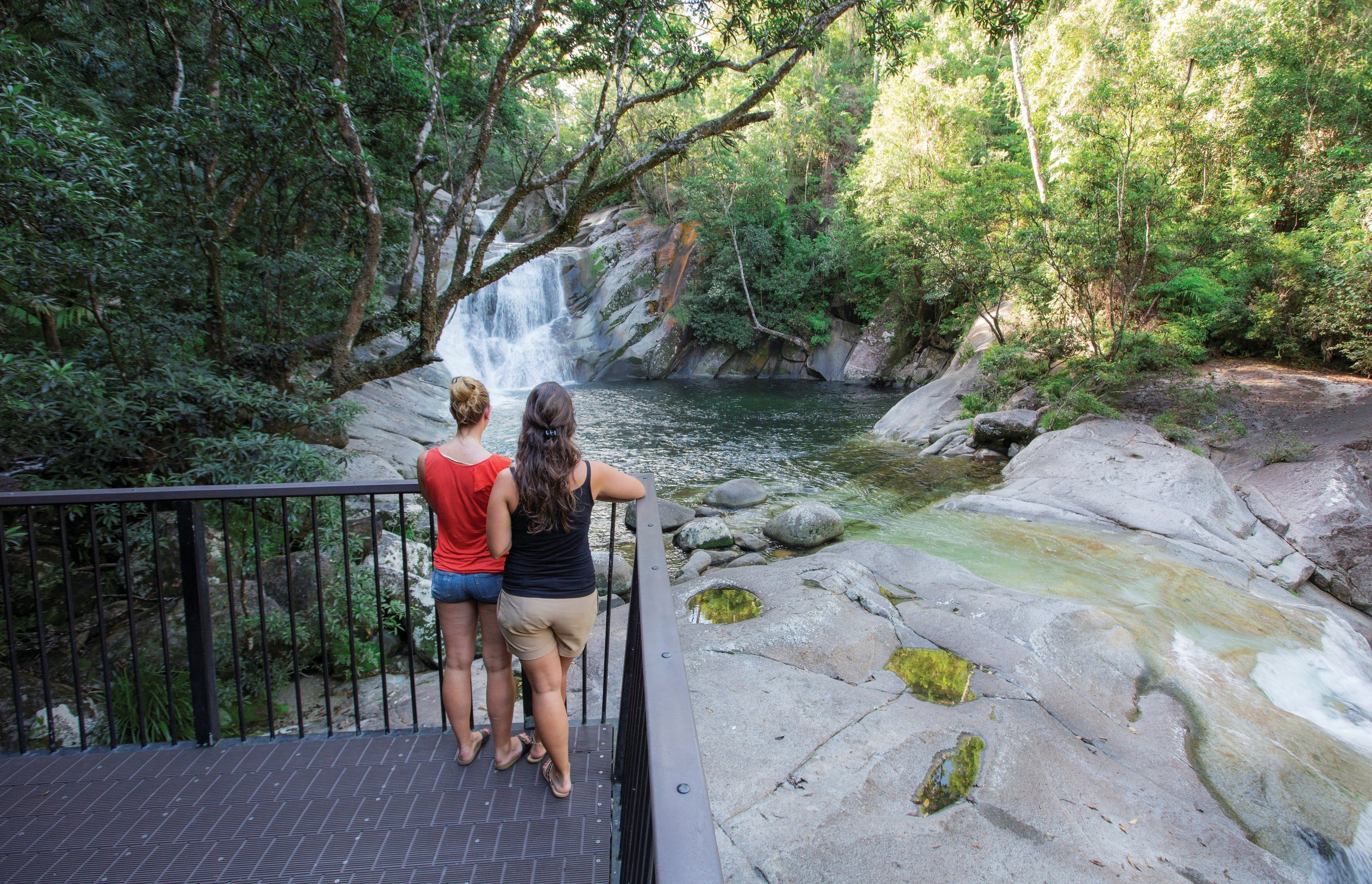 Josephine Falls walking track Wooroonooran National Park - Tourism Gold Coast