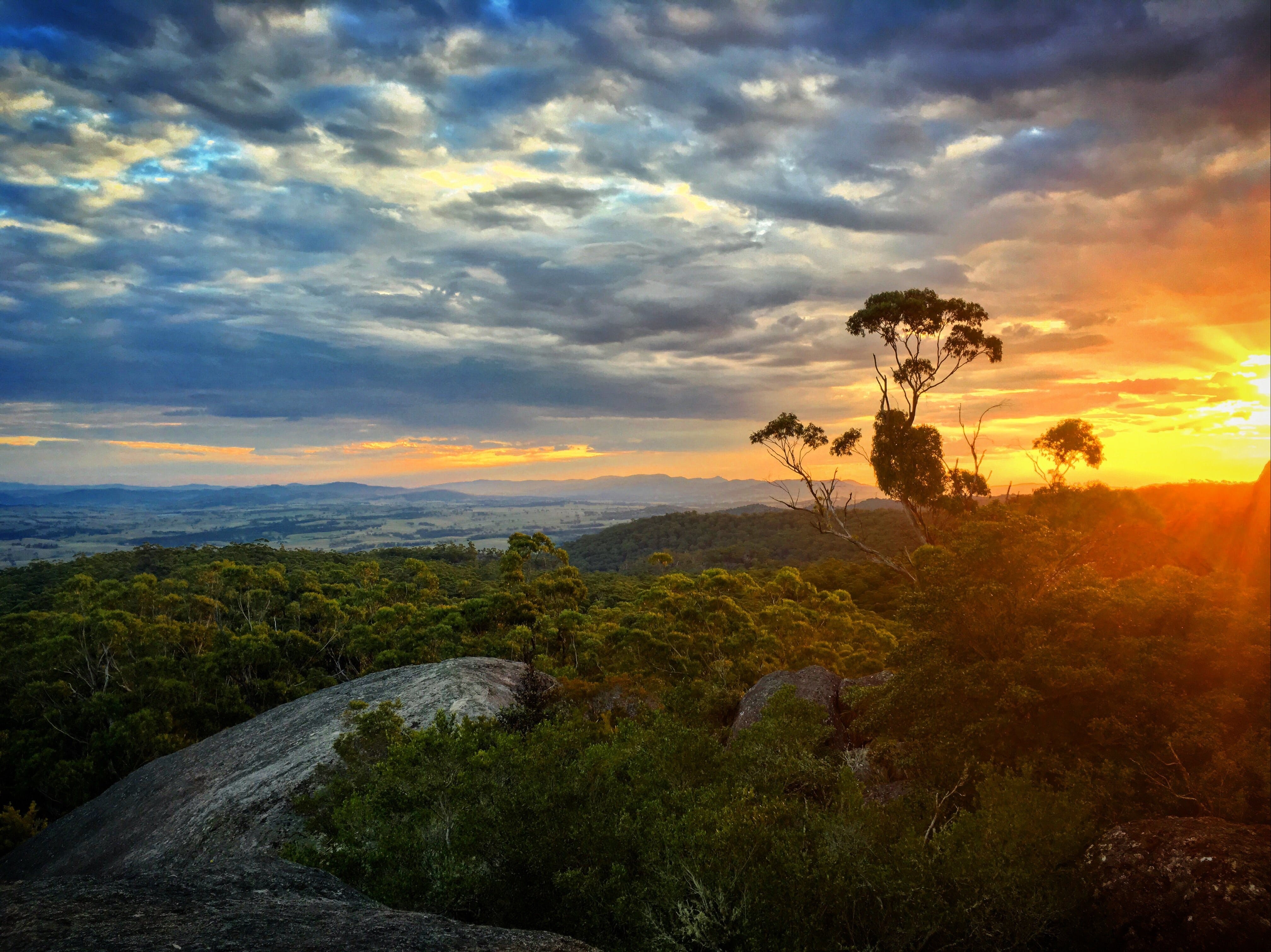 Tenterfield - Tourism Gold Coast