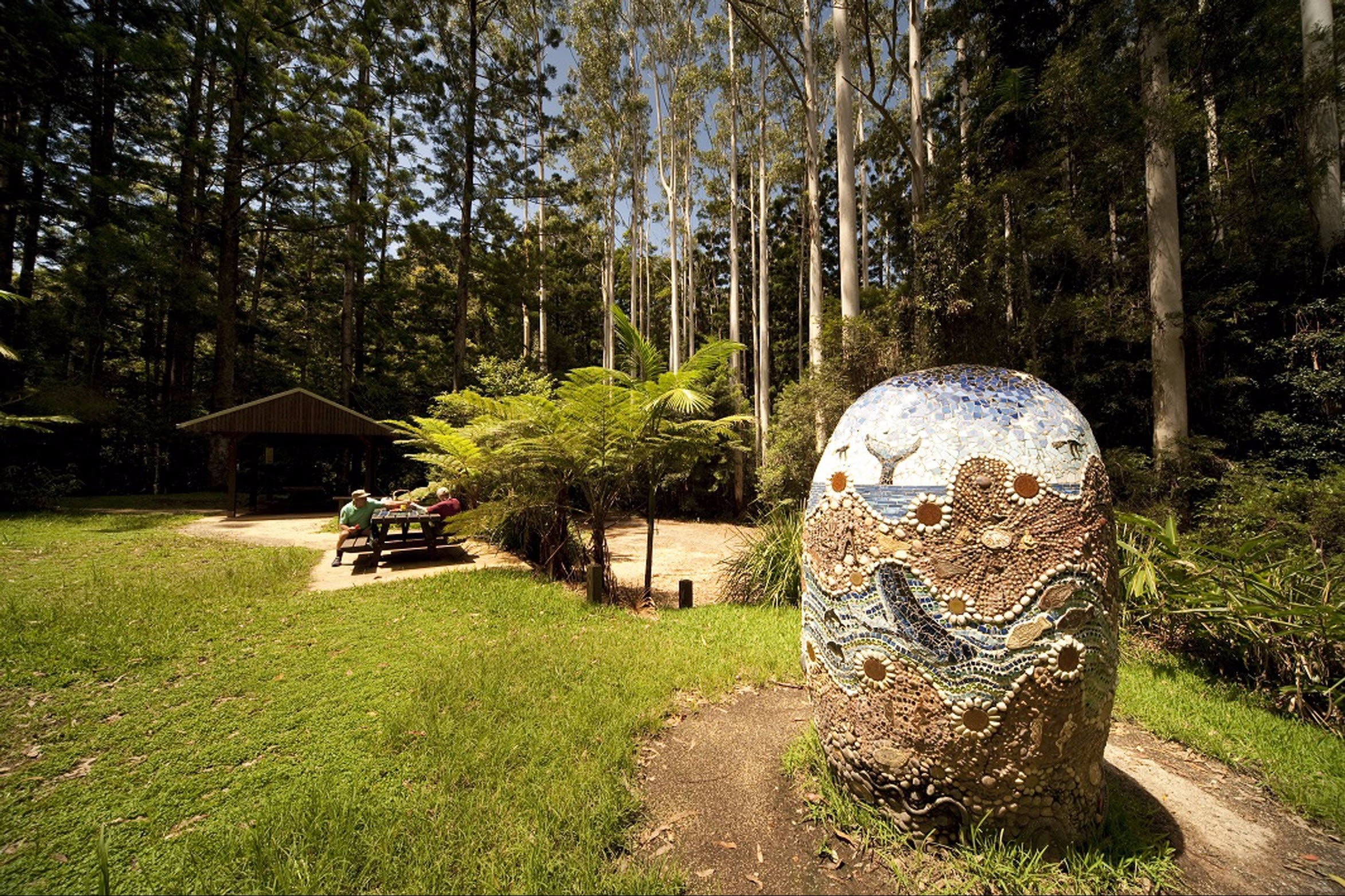 The Pines Picnic Area - Tourism Gold Coast
